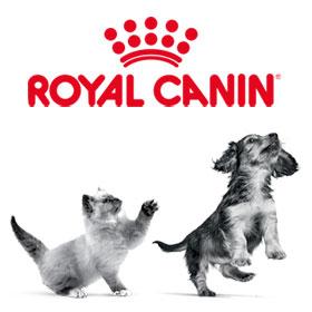 Royal Canin : Pack de bienvenue chaton et chiot  gratuit