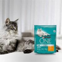 Echantillons gratuits de nourriture Purina ONE pour chat