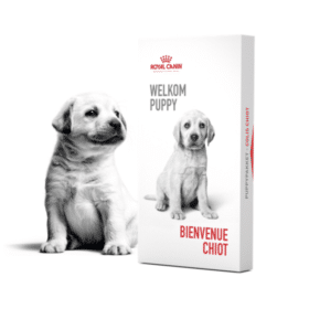 colis chiot a recevoir - offer.royalcanin.be