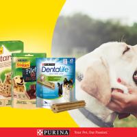 recevez les snacks gratuits pour chiens
